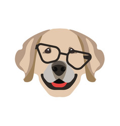 Labrador retriever dog in black glasses isolated vector