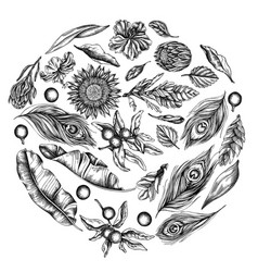Round floral design with black and white banana vector