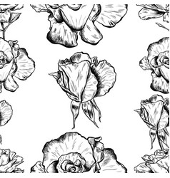 seamless pattern of highly detailed hand drawn vector image