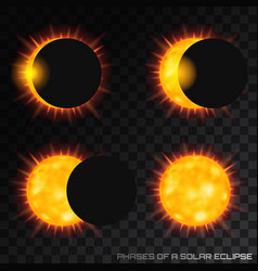 phases of the total solar eclipse on vector image
