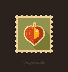 physalis berries flat stamp vegetable vector image vector image