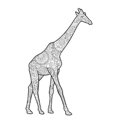 Giraffe coloring book for adults vector image vector image