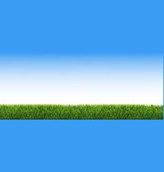 Green grass border blue sky vector