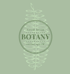 hand drawn vintage fern botanical banner vector image