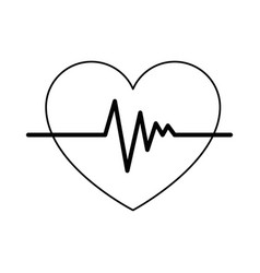 heart cardio isolated icon vector image