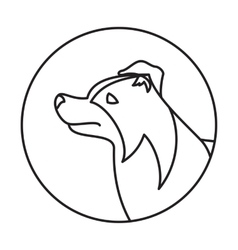 Line collie border head dog in round vector