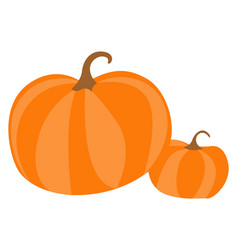 pumpkin healthy organic vegetable in flat design vector image