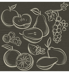Set of fruits apple pear mango orange vector