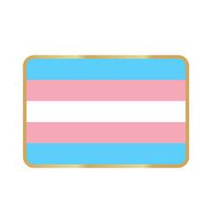 Transgender flag icon vector