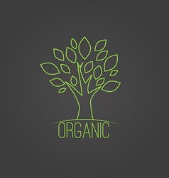 natural organic label in trendy linear style - vector image vector image
