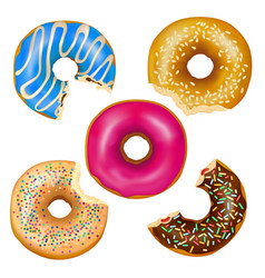 realistic eaten donuts set vector image vector image