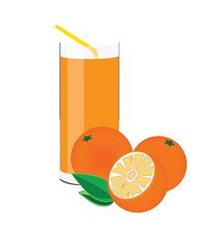 Orange juice and fruit vector image vector image