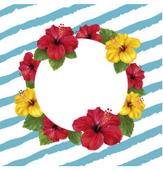summer background with hibiscus vector image vector image