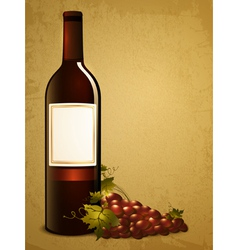 bottle of red wine with grape vector image