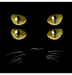 Closeup portrait of black cat with four eyes vector