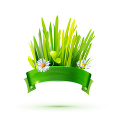 Green grass and ribbon label vector