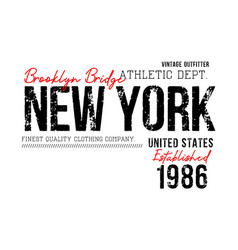 new york sport typography vector image