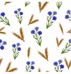 Seamless pattern with cornflowers and ears vector