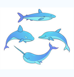set of underwater whales shark narwhal dolphin vector image