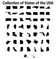 set us states maps vector image