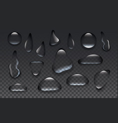 clear transparent water drops isolated on the vector image vector image