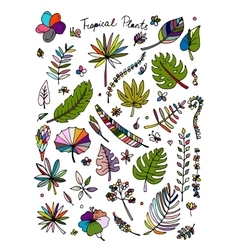 Tropical plants sketch for your design vector image vector image