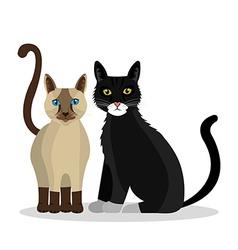 Cat design vector