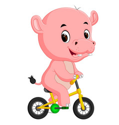 cute hippopotamus bicycling vector image