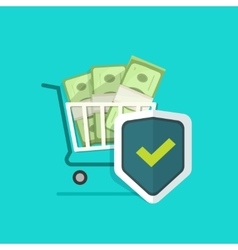 Ecommerce payment protection protected cash vector