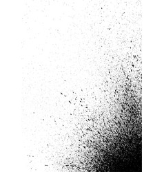 graffiti spray paint detail in black on white vector image vector image