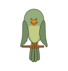 Bird pet mascot vector