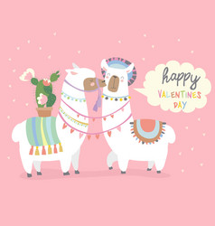 Cute friends mexican white alpaca llamas kissing vector