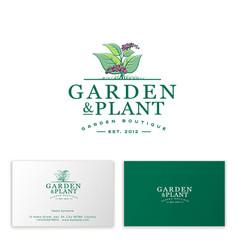 leaves berry logo garden plants shop business card vector image