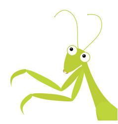 Mantis icon in corner cute cartoon kawaii vector