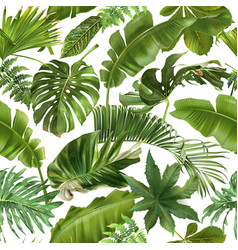 seamless pattern with green tropical leaves vector image