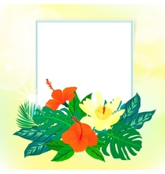 Square card with tropical decor vector image