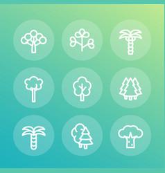 Trees line icons set palm fir baobab eucalyptus vector