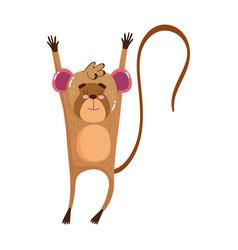 cute animals monkey cartoon isolated icon design vector image