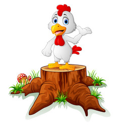 cute hen posing on tree stump vector image