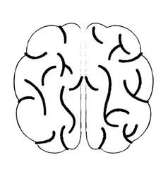 Sketch brain human knowledge process vector