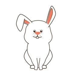 rabbit bunny pet vector image