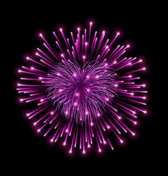 beautiful heart-firework pink romantic firework vector image
