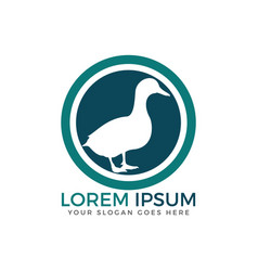 duck logo template design vector image