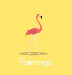 Flamingo bird design on yellow background vector