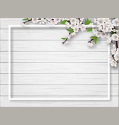 Frame with spring blossoming cherry branches vector