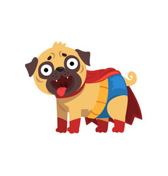 Funny pug dog character in a superhero costume vector