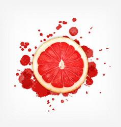 grapefruit with splash vector image