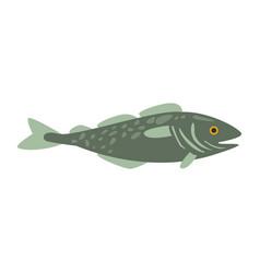 Grey mackerel fish part of mediterranean sea vector