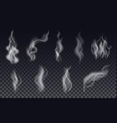 Realistic cigarette smoke waves or steam vector