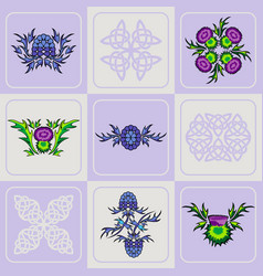 Set of a thistle flowers and celtic knots vector